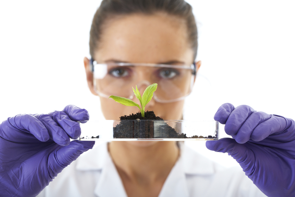 young lab assistant holds small flat dish with soil and plant, i