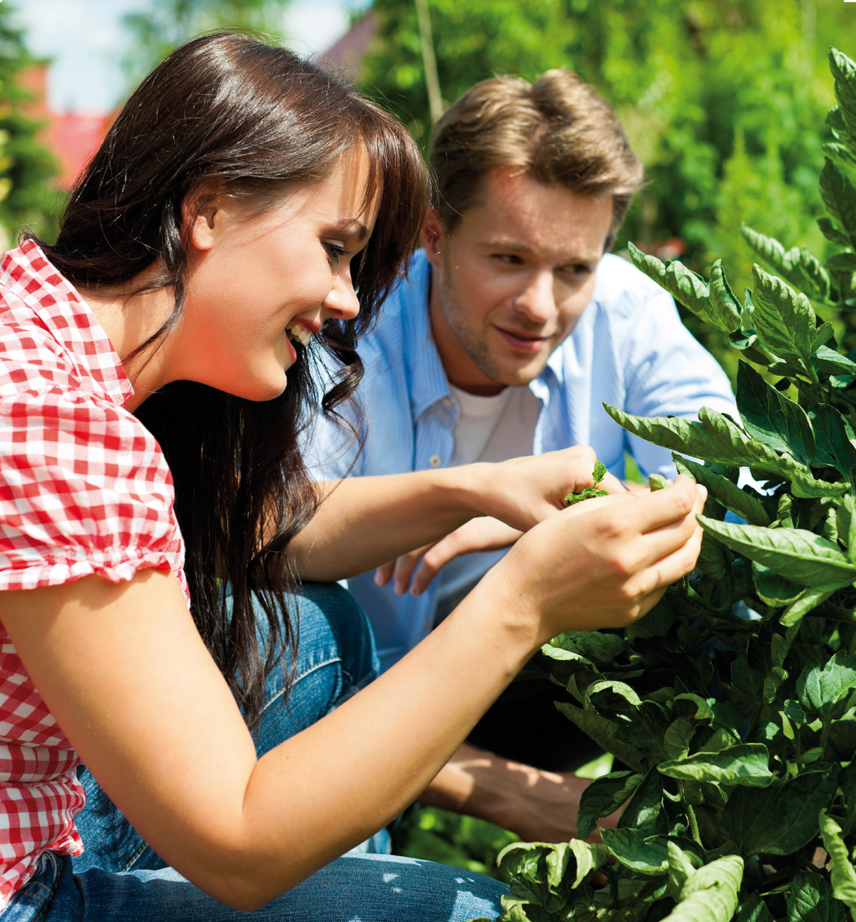 Teandances-2016-faire-realiser-soi-meme-jardin-agriculture-urbaine