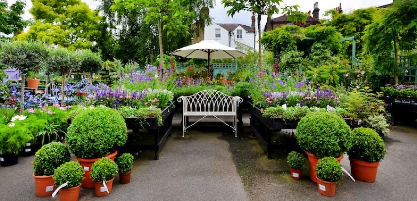 jardinerie-urbain-horti-media