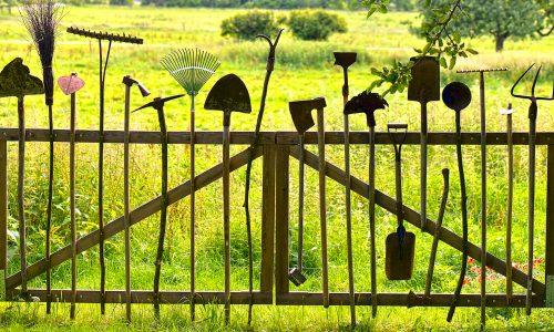 Les bons outils et les bons équipements font les bons jardiniers