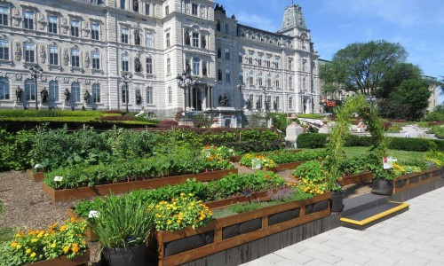 L'agriculture urbaine influencera-t-elle l'urbanisme?